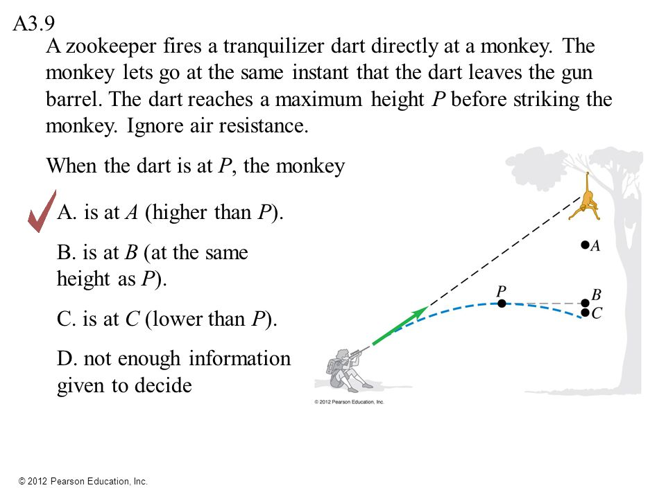 © 2012 Pearson Education, Inc. A zookeeper fires a tranquilizer dart directly at a monkey. The monkey lets go at the same instant that the dart leaves