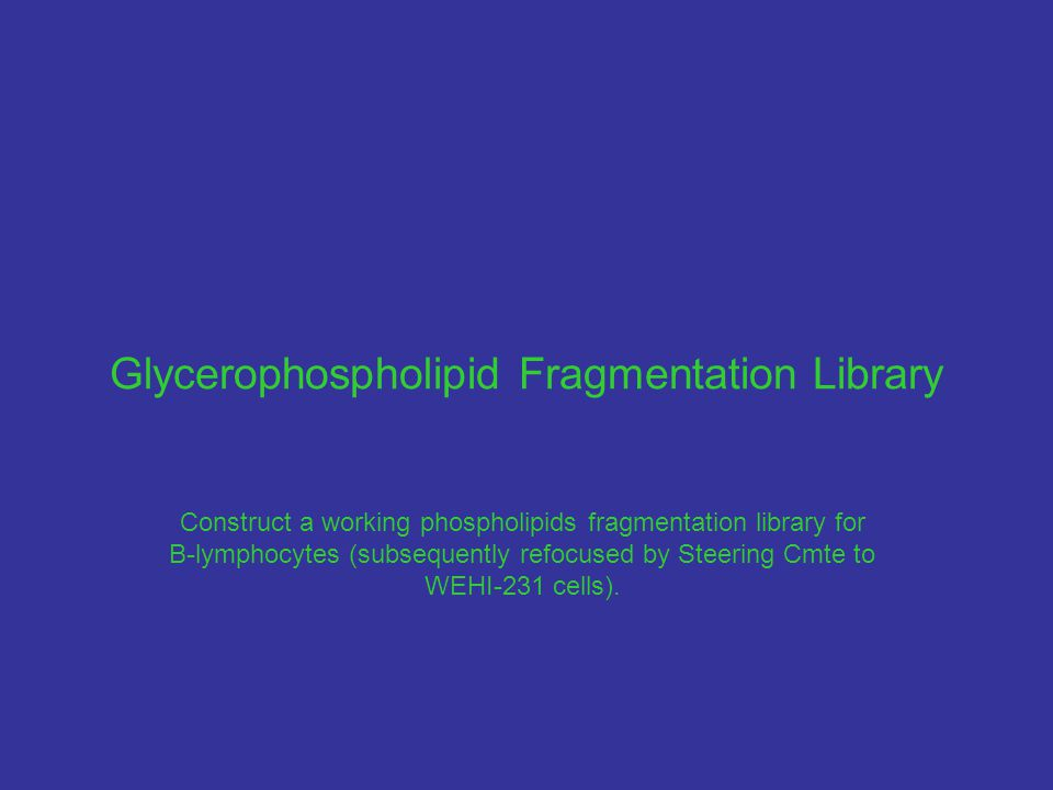 Glycerophospholipid Fragmentation Library Construct a working phospholipids fragmentation library for B-lymphocytes (subsequently refocused by Steering Cmte to WEHI-231 cells).