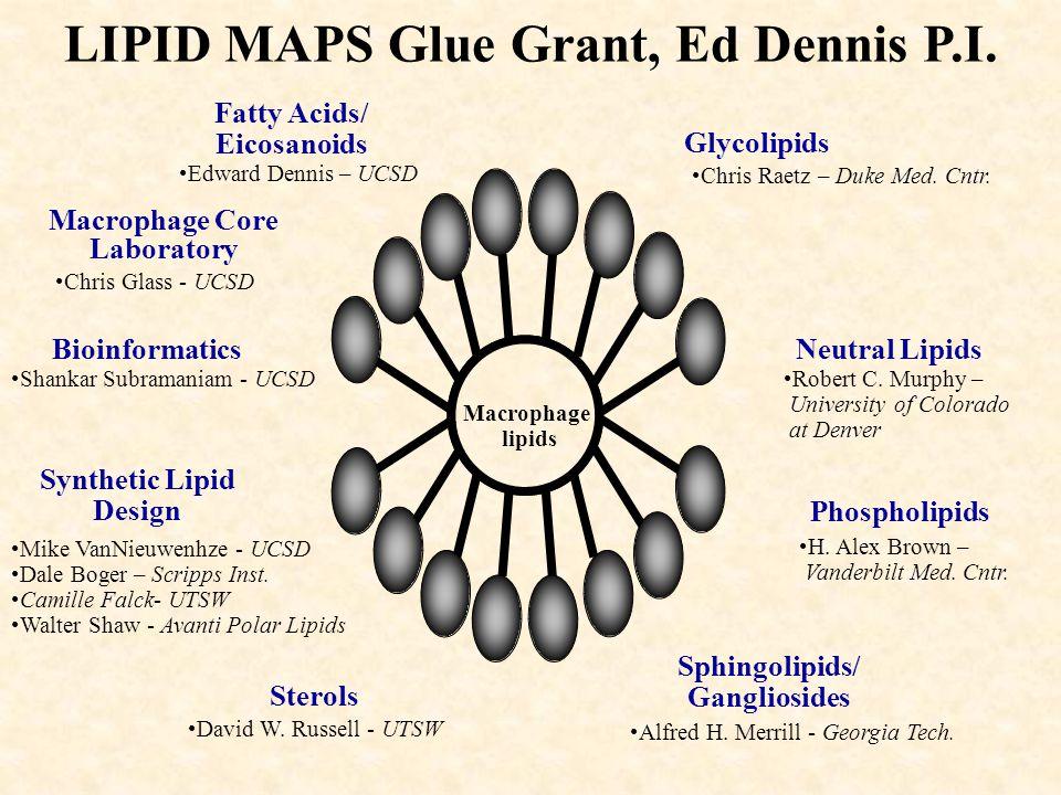 LIPID MAPS Glue Grant, Ed Dennis P.I.