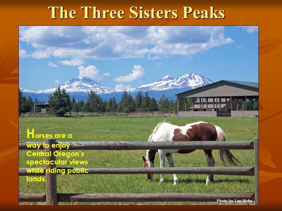 The Three Sisters Peaks H orses are a way to enjoy Central Oregon's spectacular views while riding public lands.
