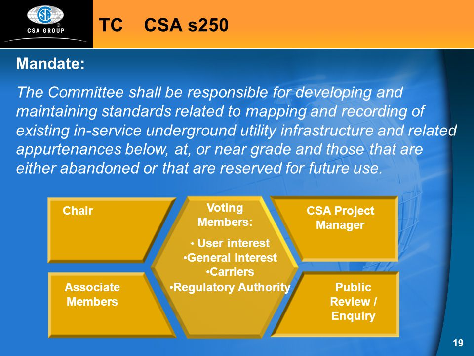 19 Chair Associate Members CSA Project Manager Public Review / Enquiry User interest General interest Carriers Regulatory Authority Voting Members: TC