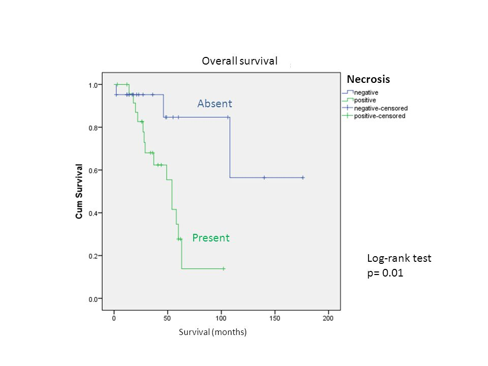 Overall survival Necrosis Survival (months) Absent Present Log-rank test p= 0.01