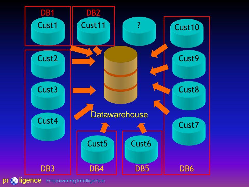 prligence Empowering Intelligence Datawarehouse Cust1 Cust2 Cust3 Cust4 Cust10 Cust9 Cust8 Cust7 Cust11.