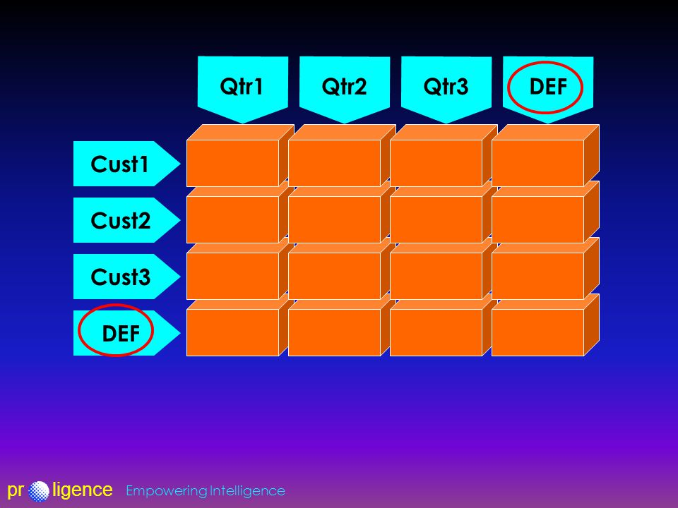 prligence Empowering Intelligence Qtr1 Qtr2Qtr3 DEF Cust1 Cust2 Cust3 DEF
