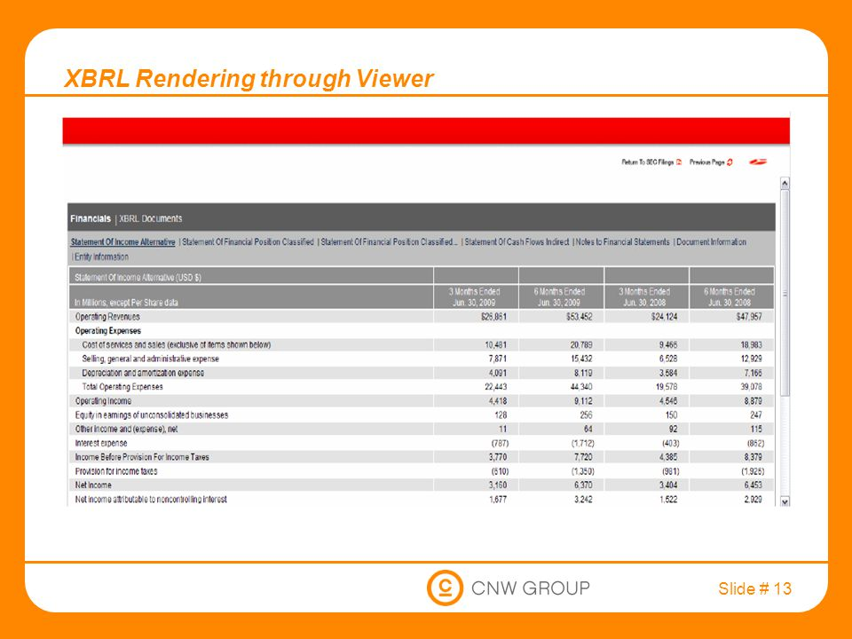 Slide # 13 XBRL Rendering through Viewer