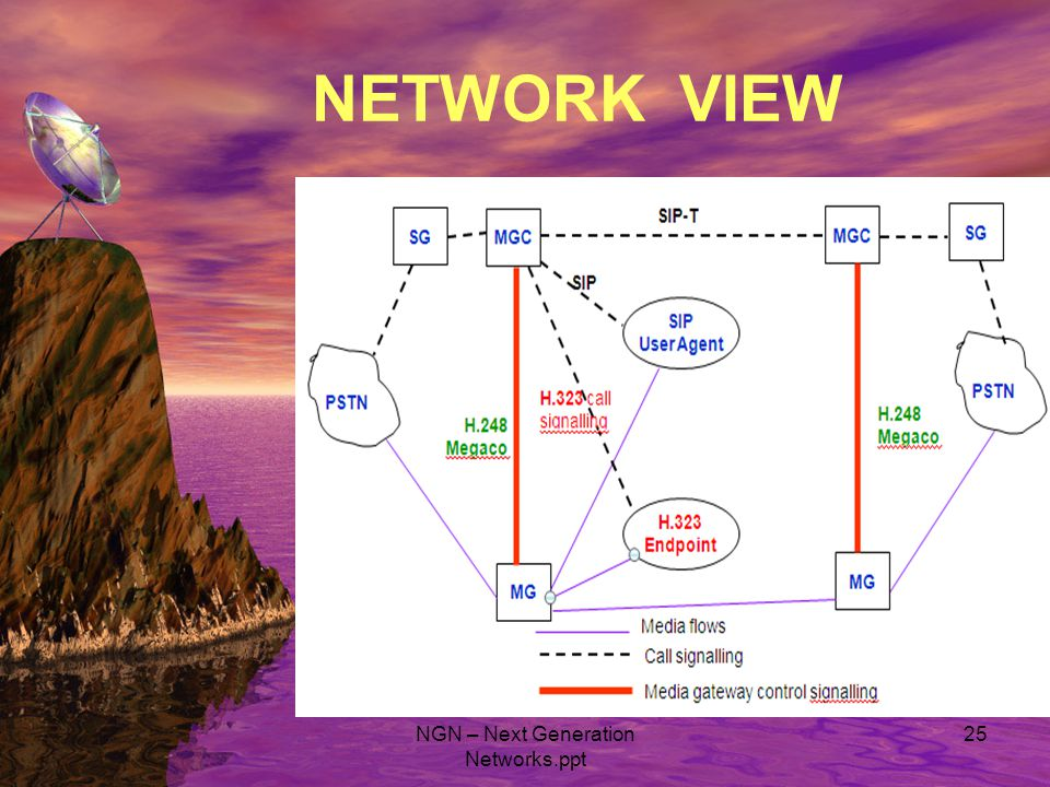NETWORK VIEW NGN – Next Generation Networks.ppt 25