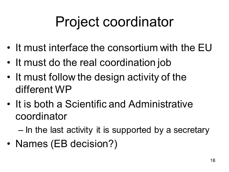 16 Project coordinator It must interface the consortium with the EU It must do the real coordination job It must follow the design activity of the dif