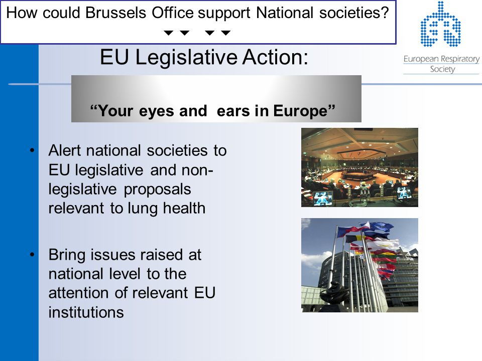 EU Legislative Action: Your eyes and ears in Europe Alert national societies to EU legislative and non- legislative proposals relevant to lung health Bring issues raised at national level to the attention of relevant EU institutions How could Brussels Office support National societies.