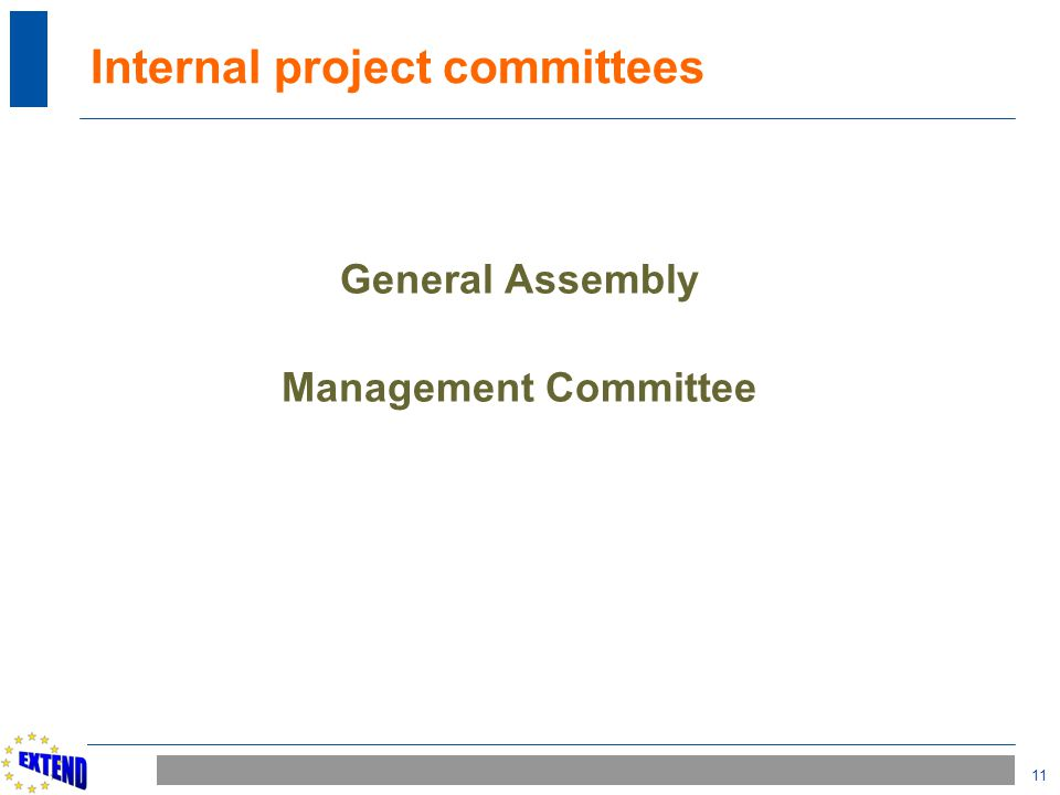 11 Internal project committees General Assembly Management Committee