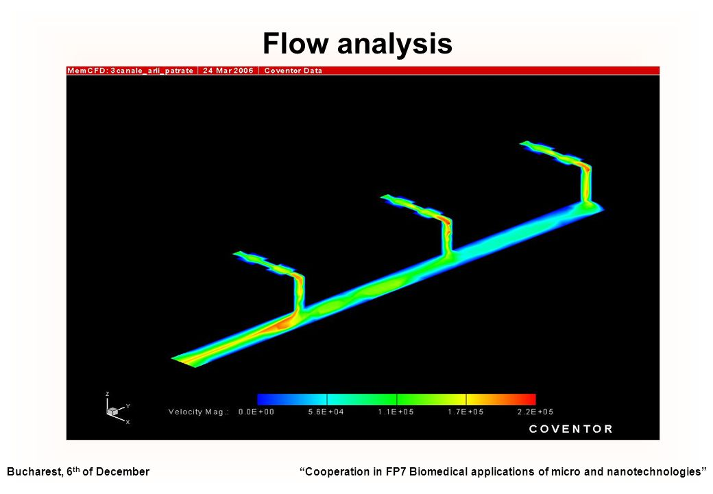 Flow analysis Bucharest, 6 th of December Cooperation in FP7 Biomedical applications of micro and nanotechnologies
