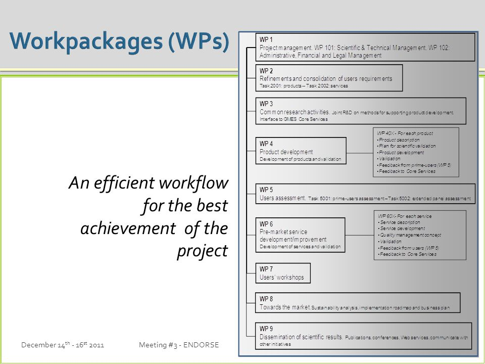 An efficient workflow for the best achievement of the project December 14 th - 16 st 2011Meeting #3 - ENDORSE12