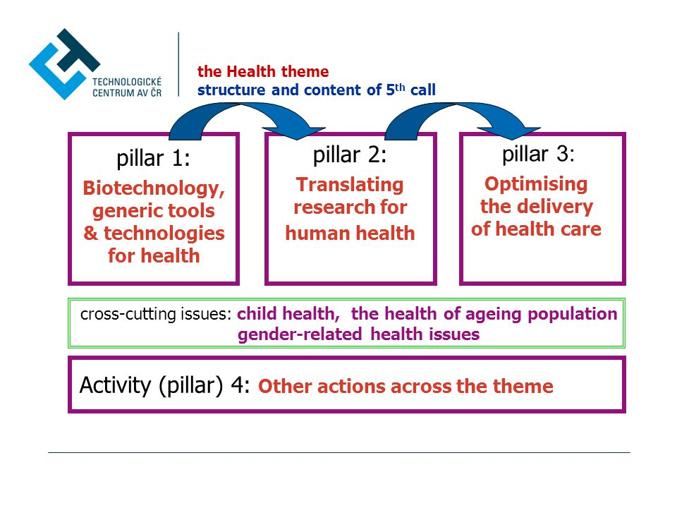 the Health theme structure and content of 5 th call pillar 1: Biotechnology, generic tools & technologies for health pillar 2: Translating research for human health pillar 3: Optimising the delivery of health care cross-cutting issues: child health, the health of ageing population gender-related health issues Activity (pillar) 4: Other actions across the theme