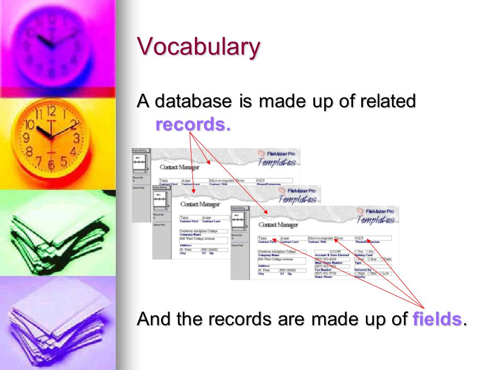 Vocabulary A database is made up of related records. And the records are made up of fields.