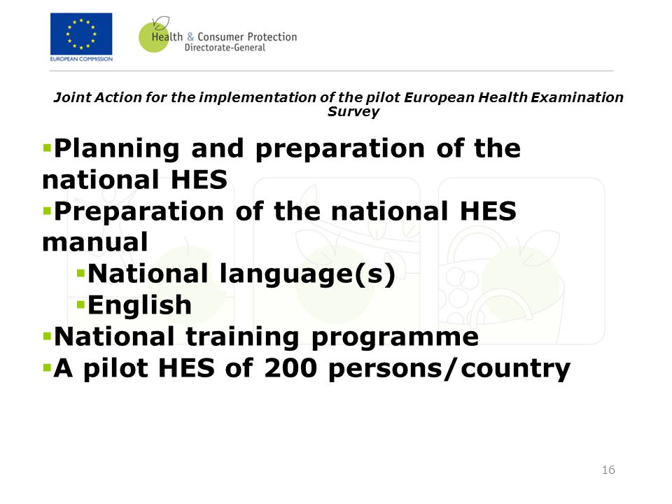 16 Joint Action for the implementation of the pilot European Health Examination Survey  Planning and preparation of the national HES  Preparation of the national HES manual  National language(s)  English  National training programme  A pilot HES of 200 persons/country