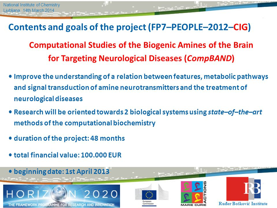 National Institute of Chemistry Ljubljana, 14th March 2014 Ruđer Bošković Institute Contents and goals of the project (FP7–PEOPLE–2012–CIG) Computatio