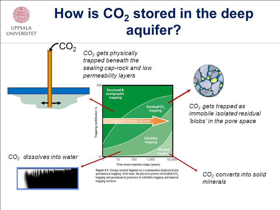 How is CO 2 stored in the deep aquifer? CO 2 gets trapped as immobile isolated residual 'blobs' in the pore space CO 2 CO 2 gets physically trapped be