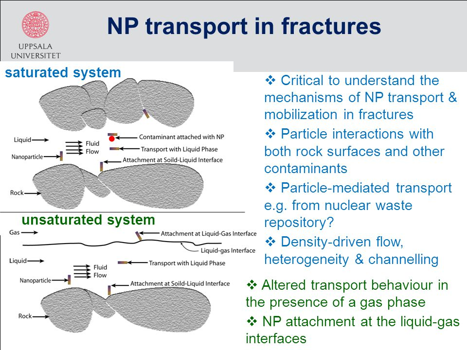  Critical to understand the mechanisms of NP transport & mobilization in fractures  Particle interactions with both rock surfaces and other contaminants  Particle-mediated transport e.g.