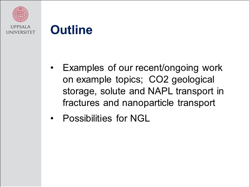 Outline Examples of our recent/ongoing work on example topics; CO2 geological storage, solute and NAPL transport in fractures and nanoparticle transport Possibilities for NGL