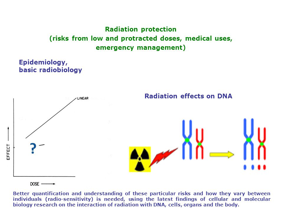 Radiation protection (risks from low and protracted doses, medical uses, emergency management) Epidemiology, basic radiobiology Radiation effects on DNA .