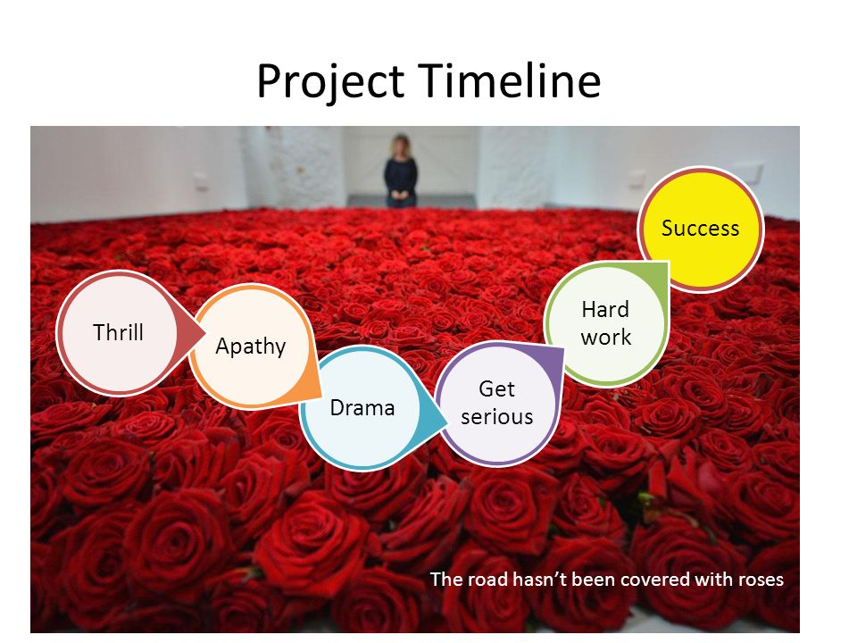 Project Timeline Success Hard work Get serious DramaApathyThrill The road hasn't been covered with roses