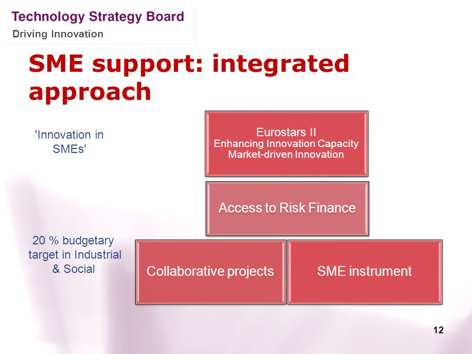 Driving Innovation SME support: integrated approach 12 20 % budgetary target in Industrial & Social 'Innovation in SMEs'