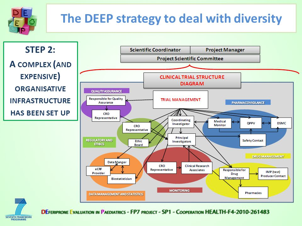 STEP 2: A COMPLEX ( AND EXPENSIVE ) ORGANISATIVE INFRASTRUCTURE HAS BEEN SET UP The DEEP strategy to deal with diversity