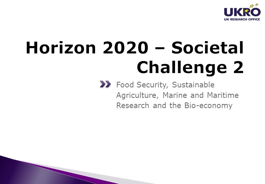 Food Security, Sustainable Agriculture, Marine and Maritime Research and the Bio-economy