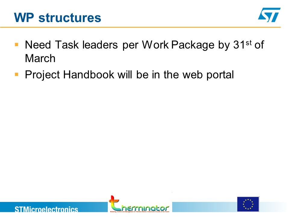 WP structures  Need Task leaders per Work Package by 31 st of March  Project Handbook will be in the web portal