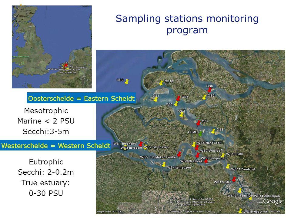 Sampling stations monitoring program 12 Oosterschelde = Eastern Scheldt Westerschelde = Western Scheldt Mesotrophic Marine < 2 PSU Secchi:3-5m Eutrophic Secchi: 2-0.2m True estuary: 0-30 PSU