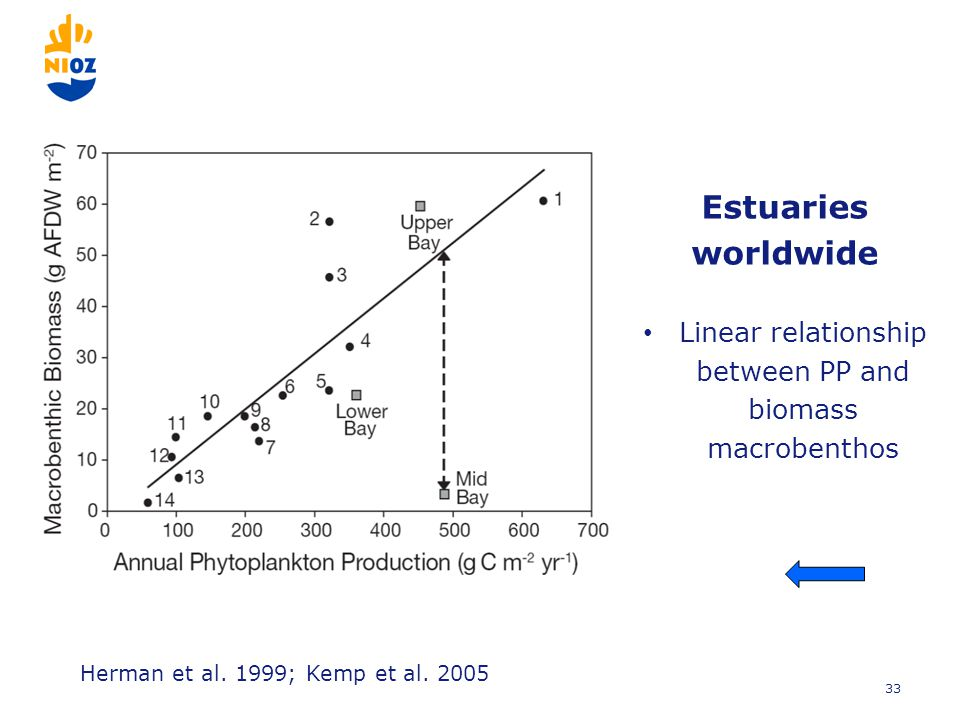 33 Estuaries worldwide Linear relationship between PP and biomass macrobenthos Herman et al.
