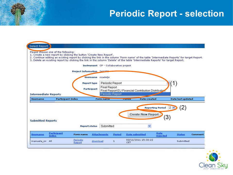 (1) (3) (2) Periodic Report - selection
