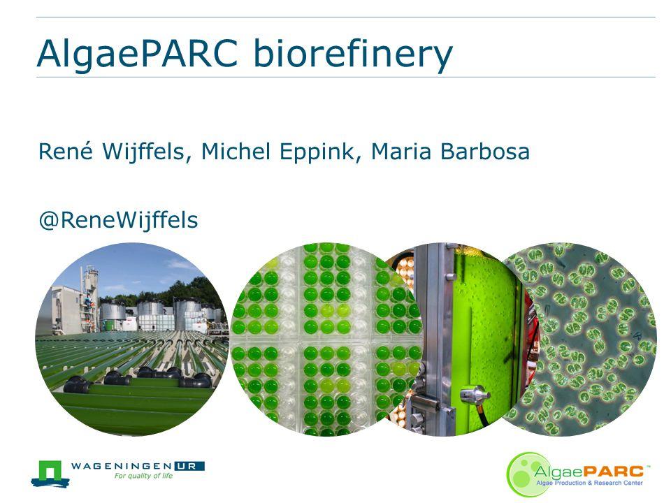 René Wijffels, Michel Eppink, Maria Barbosa @ReneWijffels AlgaePARC biorefinery