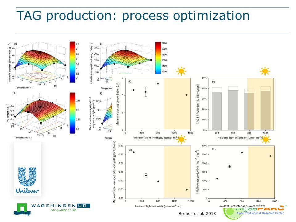 TAG production: process optimization Breuer et al. 2013