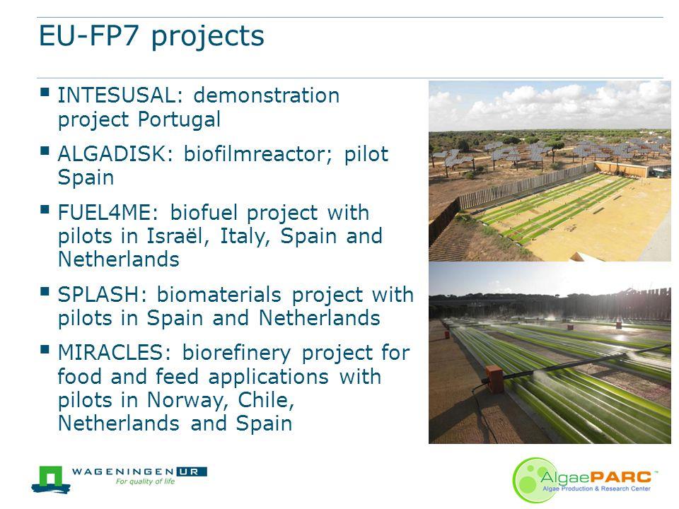 EU-FP7 projects  INTESUSAL: demonstration project Portugal  ALGADISK: biofilmreactor; pilot Spain  FUEL4ME: biofuel project with pilots in Israël,