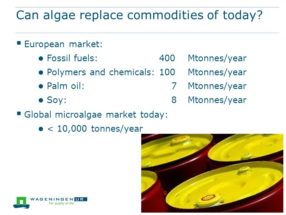 Can algae replace commodities of today?  European market: ● Fossil fuels: 400 Mtonnes/year ● Polymers and chemicals: 100 Mtonnes/year ● Palm oil: 7 M