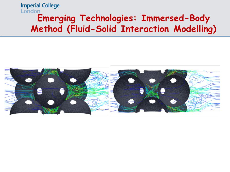 Emerging Technologies: Immersed-Body Method (Fluid-Solid Interaction Modelling)