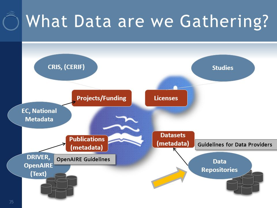 What Data are we Gathering.