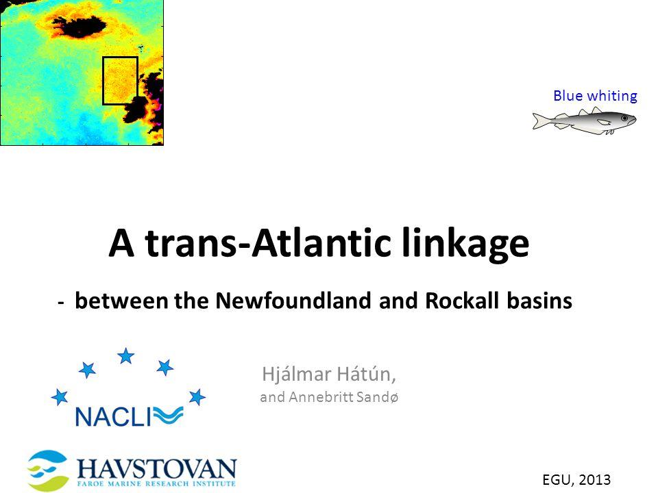 SeaWiFS-based chlorophyll in selekt Chl [mg m -3 ] A trans-Atlantic linkage - between the Newfoundland and Rockall basins Hjálmar Hátún, and Annebritt Sandø EGU, 2013 Blue whiting