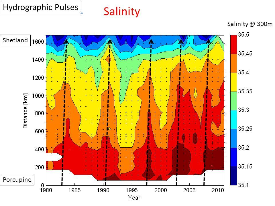 Porcupine Shetland Salinity @ 300m Hydrographic Pulses Salinity