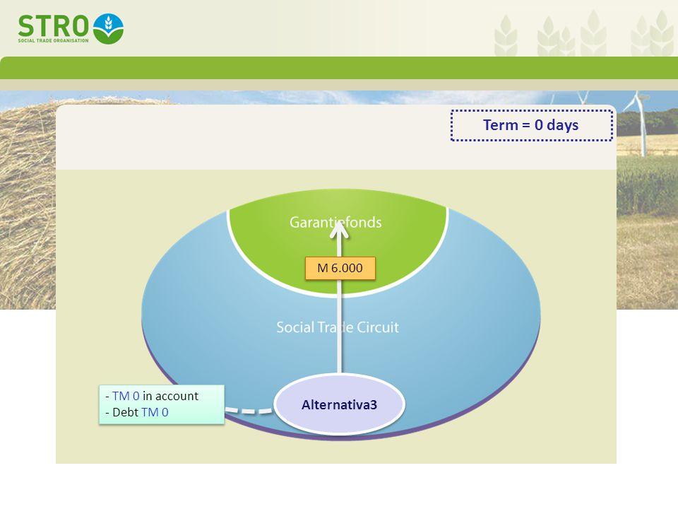 - TM 0 in account - Debt TM 0 - TM 0 in account - Debt TM 0 M 6.000 Alternativa3 Term = 0 days