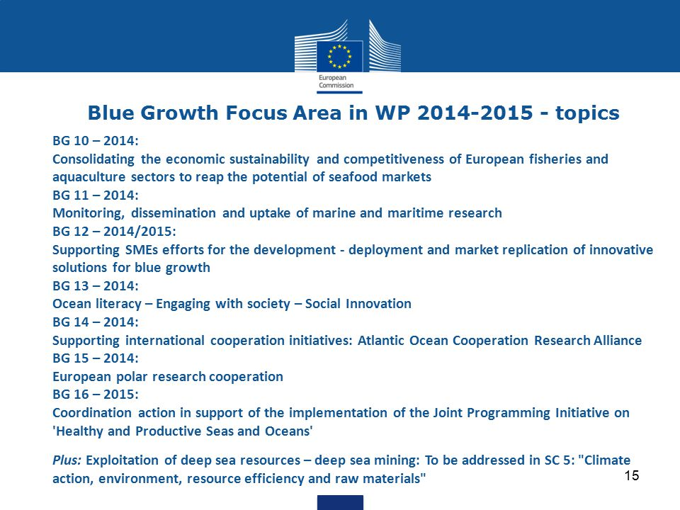 15 Blue Growth Focus Area in WP 2014-2015 - topics BG 10 – 2014: Consolidating the economic sustainability and competitiveness of European fisheries a