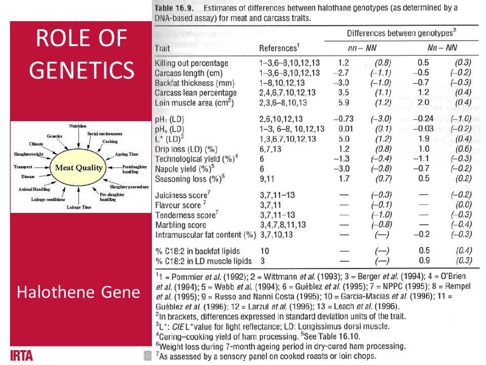 01.1 QUÈ ÉS? ROLE OF GENETICS Halothene Gene