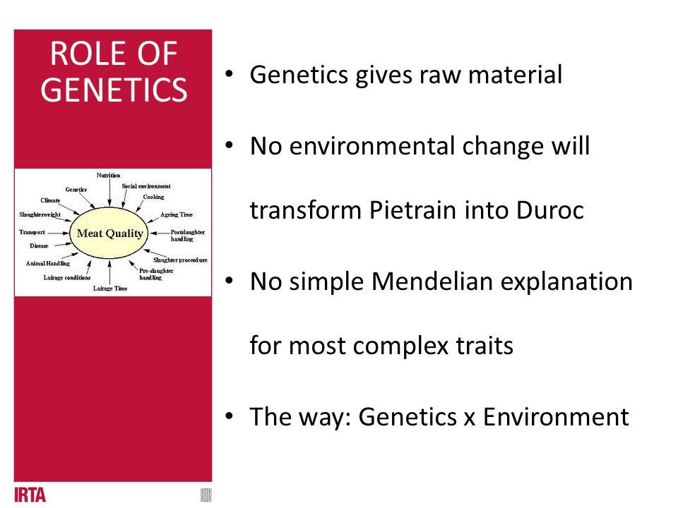 01.1 QUÈ ÉS? Genetics gives raw material No environmental change will transform Pietrain into Duroc No simple Mendelian explanation for most complex t
