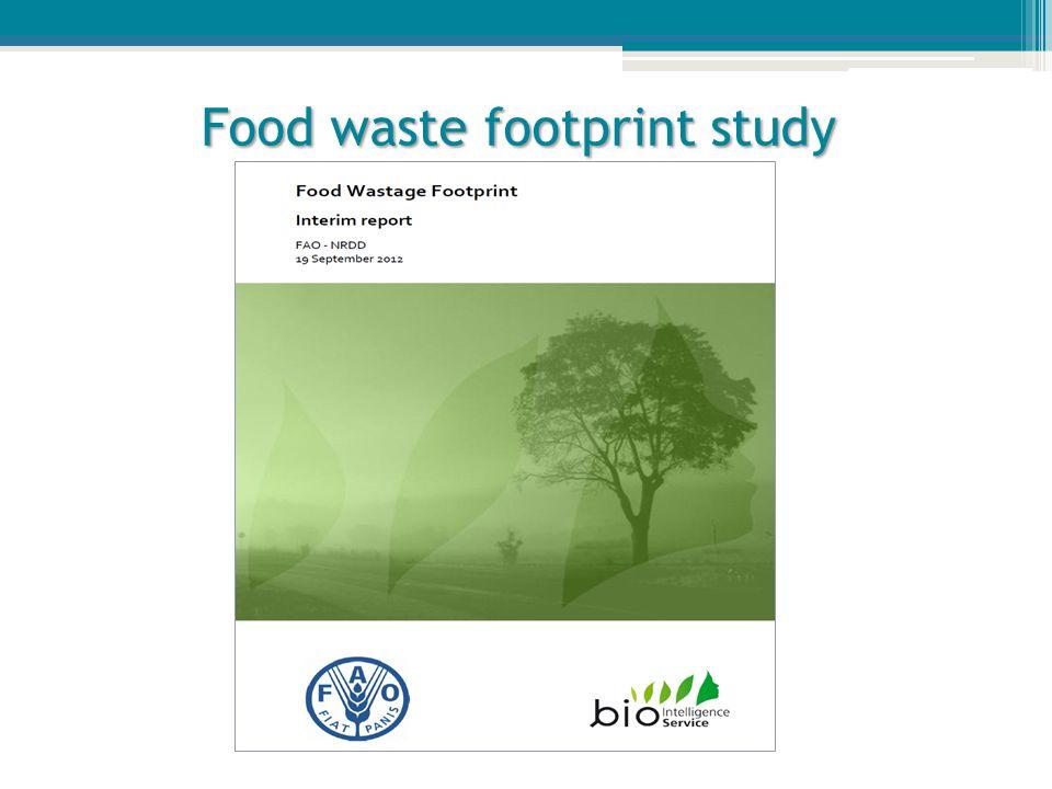 Food waste footprint study