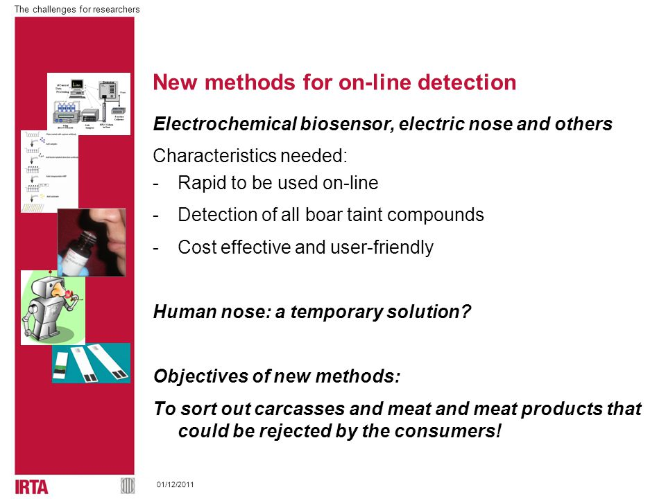 The challenges for researchers 01/12/2011 New methods for on-line detection Electrochemical biosensor, electric nose and others Characteristics needed: -Rapid to be used on-line -Detection of all boar taint compounds -Cost effective and user-friendly Human nose: a temporary solution.