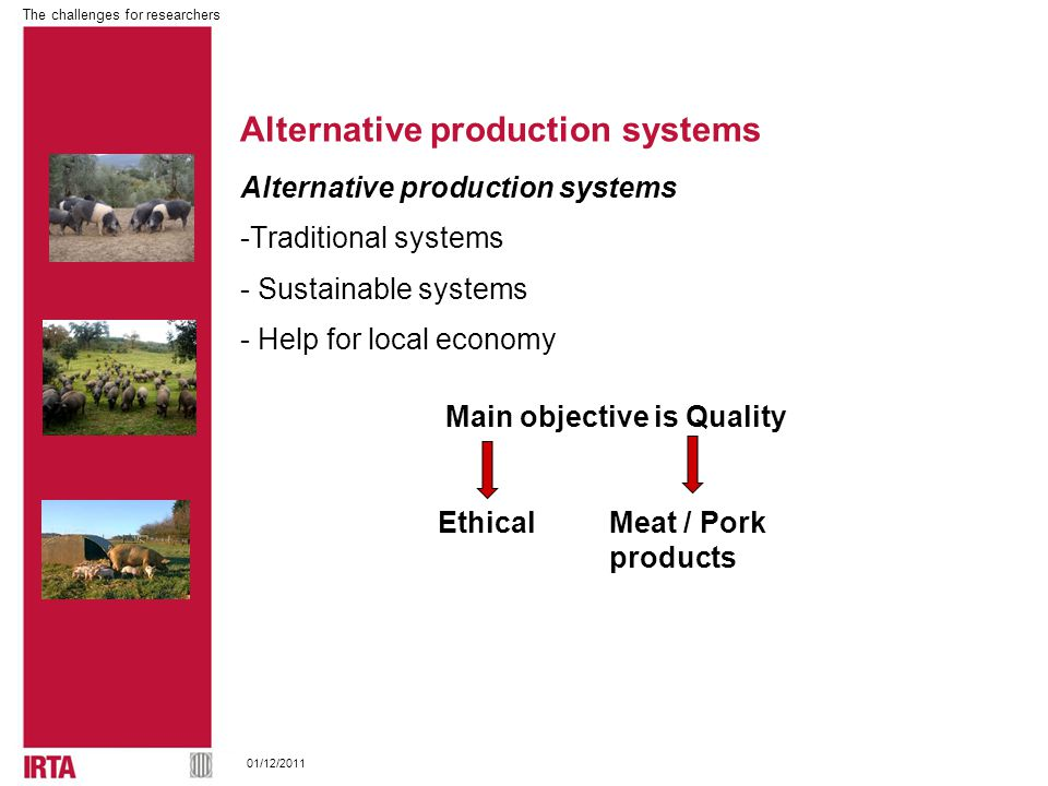 The challenges for researchers 01/12/2011 Alternative production systems -Traditional systems - Sustainable systems - Help for local economy Alternative production systems Main objective is Quality EthicalMeat / Pork products