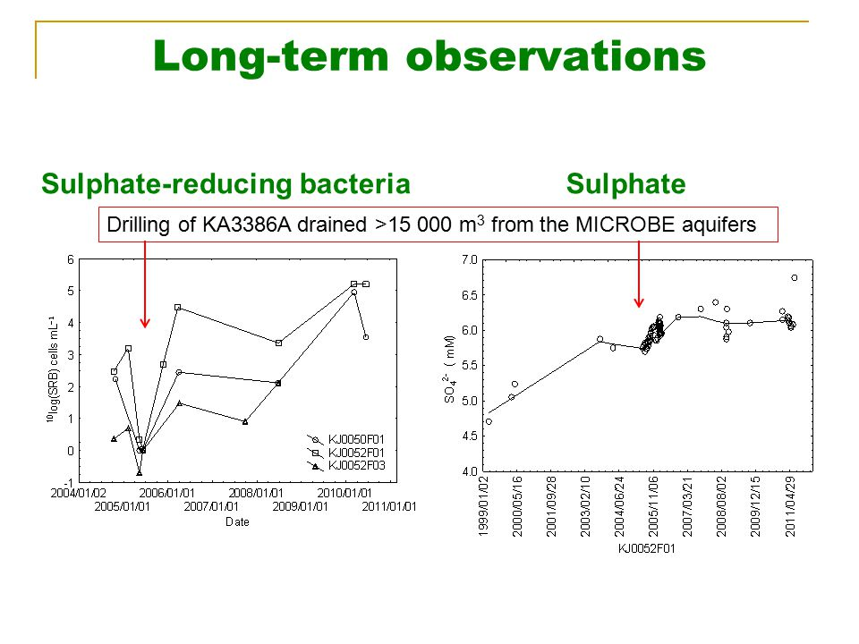 Long-term observations Sulphate-reducing bacteriaSulphate Drilling of KA3386A drained >15 000 m 3 from the MICROBE aquifers