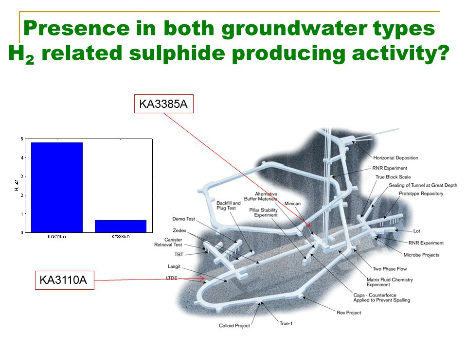 Presence in both groundwater types H 2 related sulphide producing activity? KA3110A KA3385A