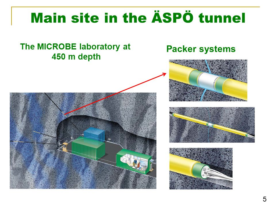 Main site in the ÄSPÖ tunnel The MICROBE laboratory at 450 m depth Packer systems 5