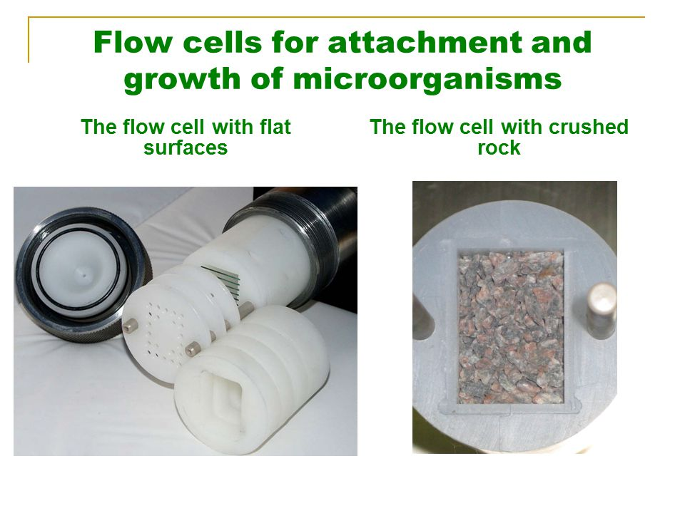 Flow cells for attachment and growth of microorganisms The flow cell with flat surfaces The flow cell with crushed rock